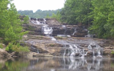 The Climate Economy in Southern Illinois
